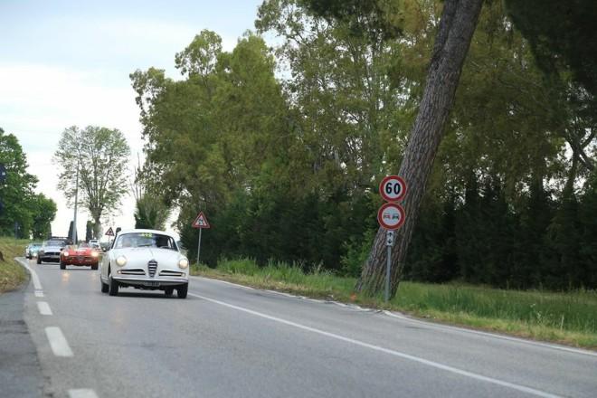 1956 Afla Romeo Sprint at Mille Miglia