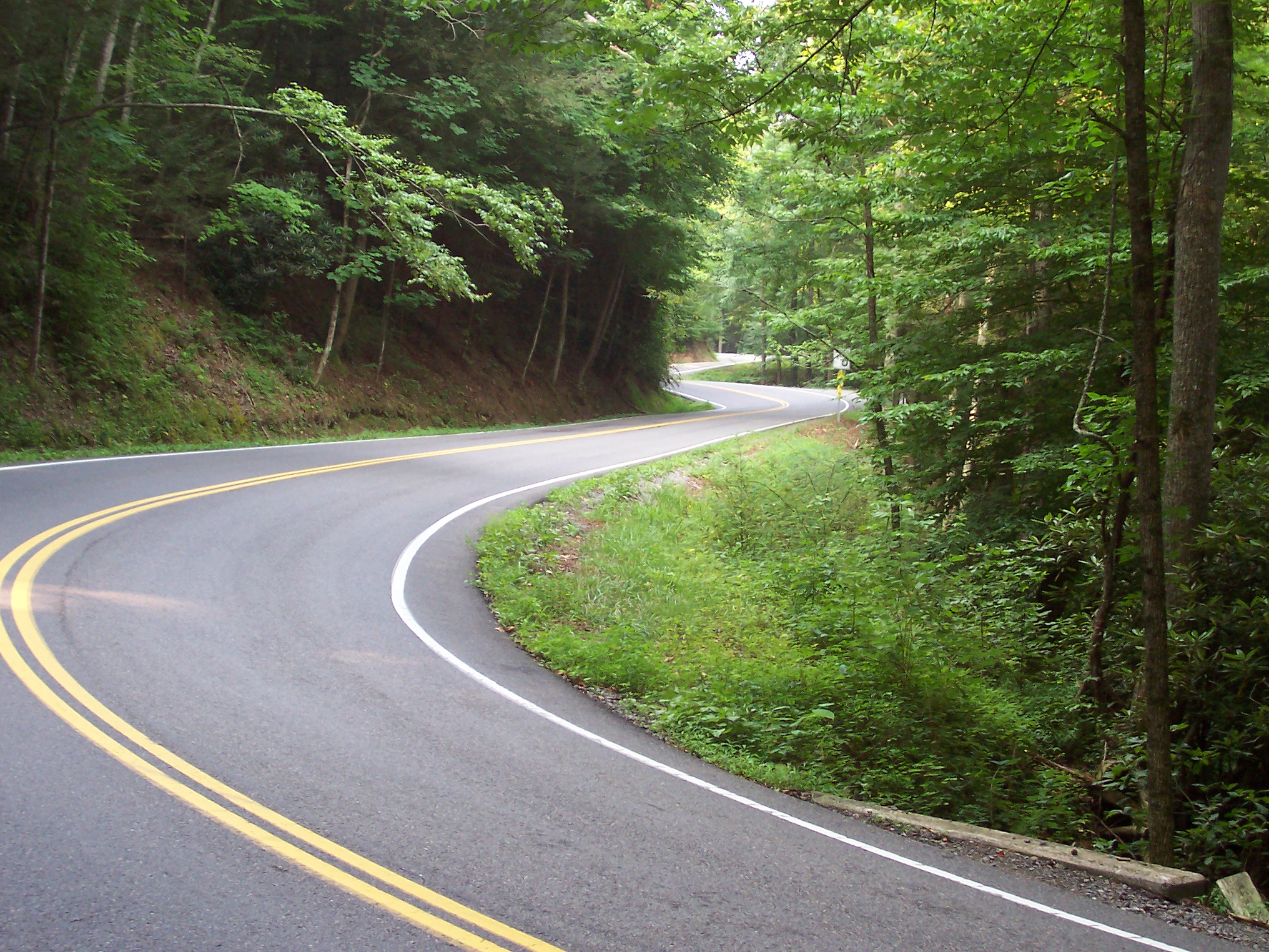 Roads Amp Rallies The Tail Of The Dragon Premier