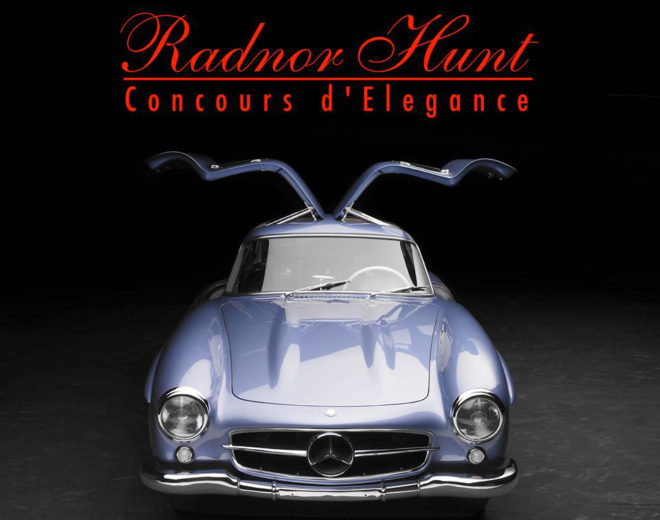 Radnor Hunt Concours d'Elegance Gullwing