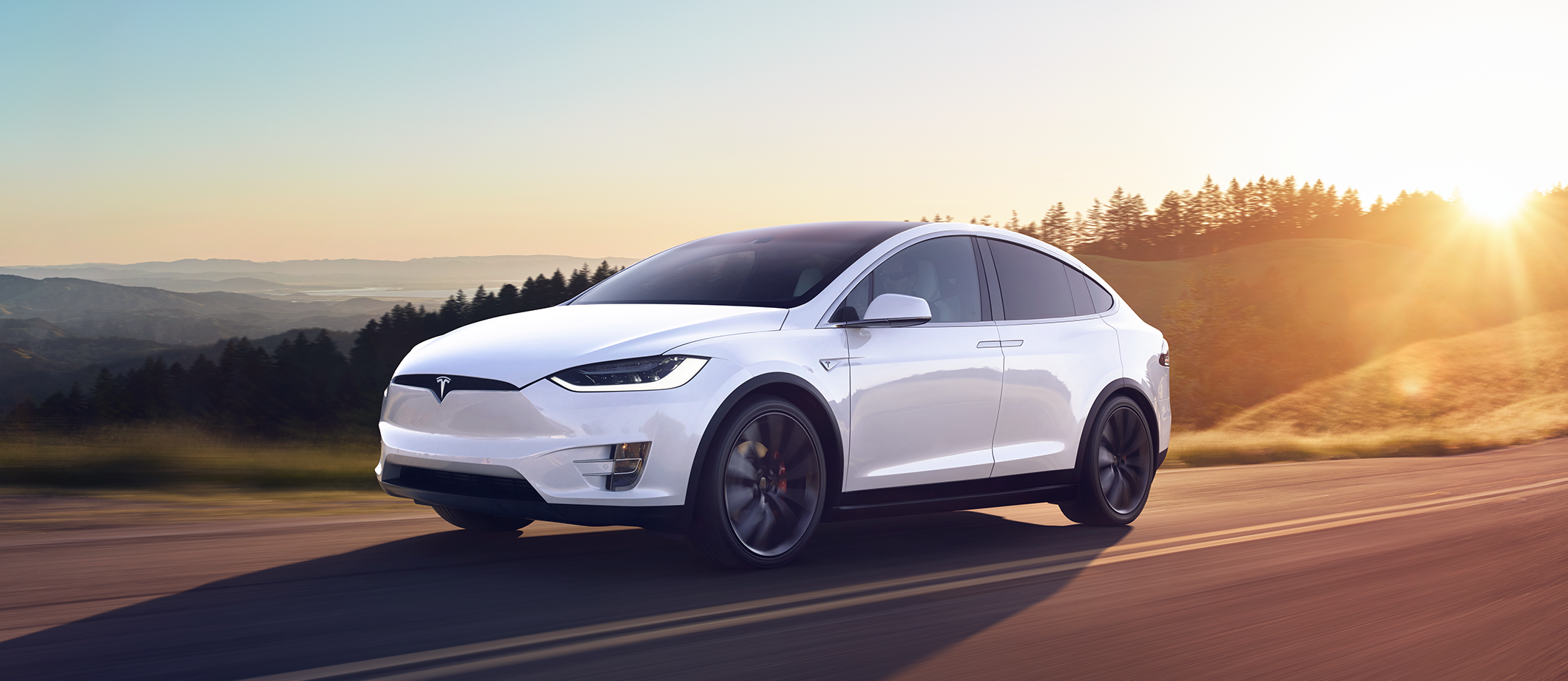 Tesla Y Image: New Model Perspective: Tesla Model X