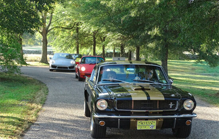 Vintage Cars at the Mountain Mille, including 1966 Shelby GT350 And Group Lease a Shelby with #pfs_leasing